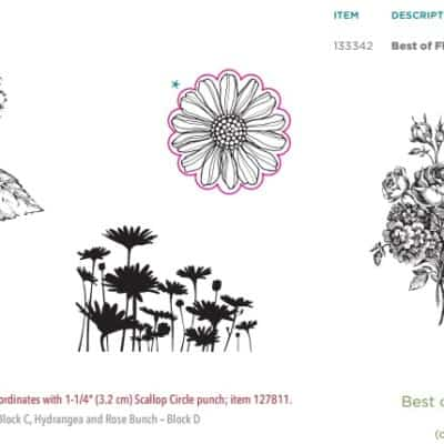 Stampin' Up! UK Best of Flower Stamp Set