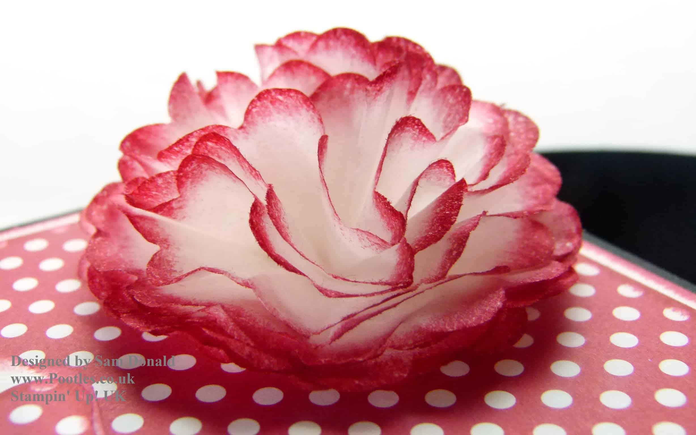 Crepe filter flower tutorial video pootles stampin up uk crepe filter flower tutorial mightylinksfo