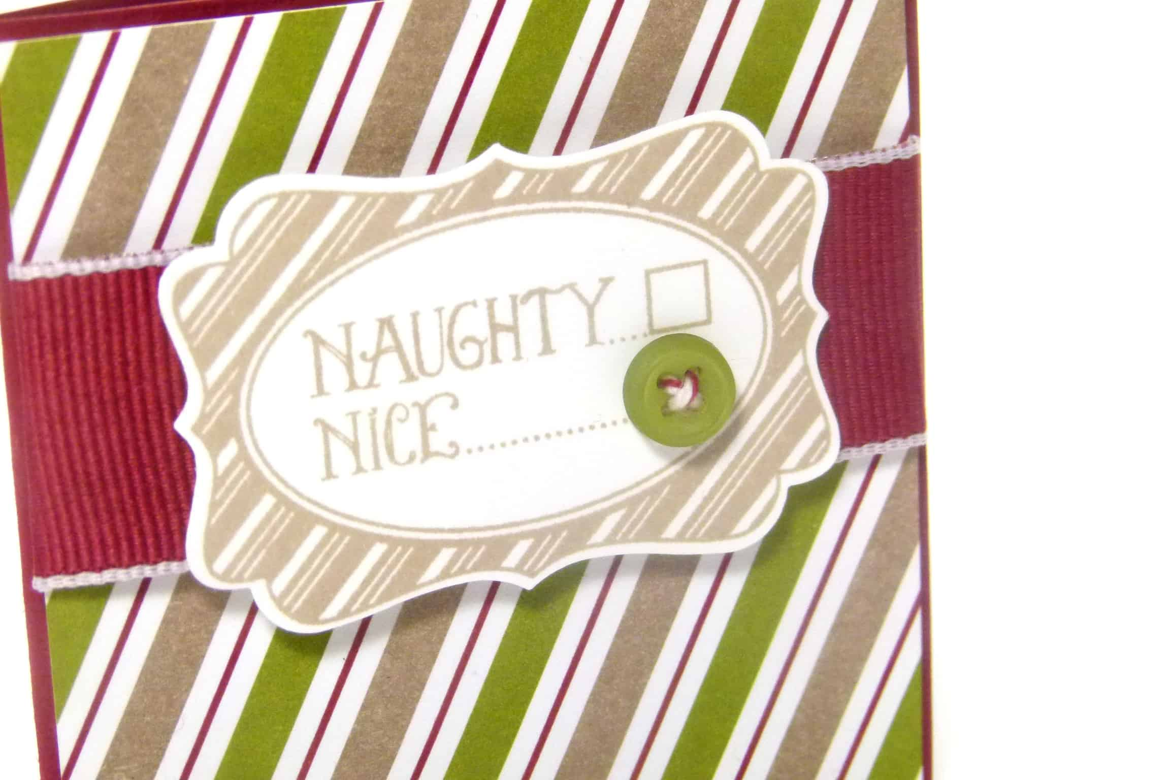 POOTLES Stampin up UK Advent Countdown Video number 3 a