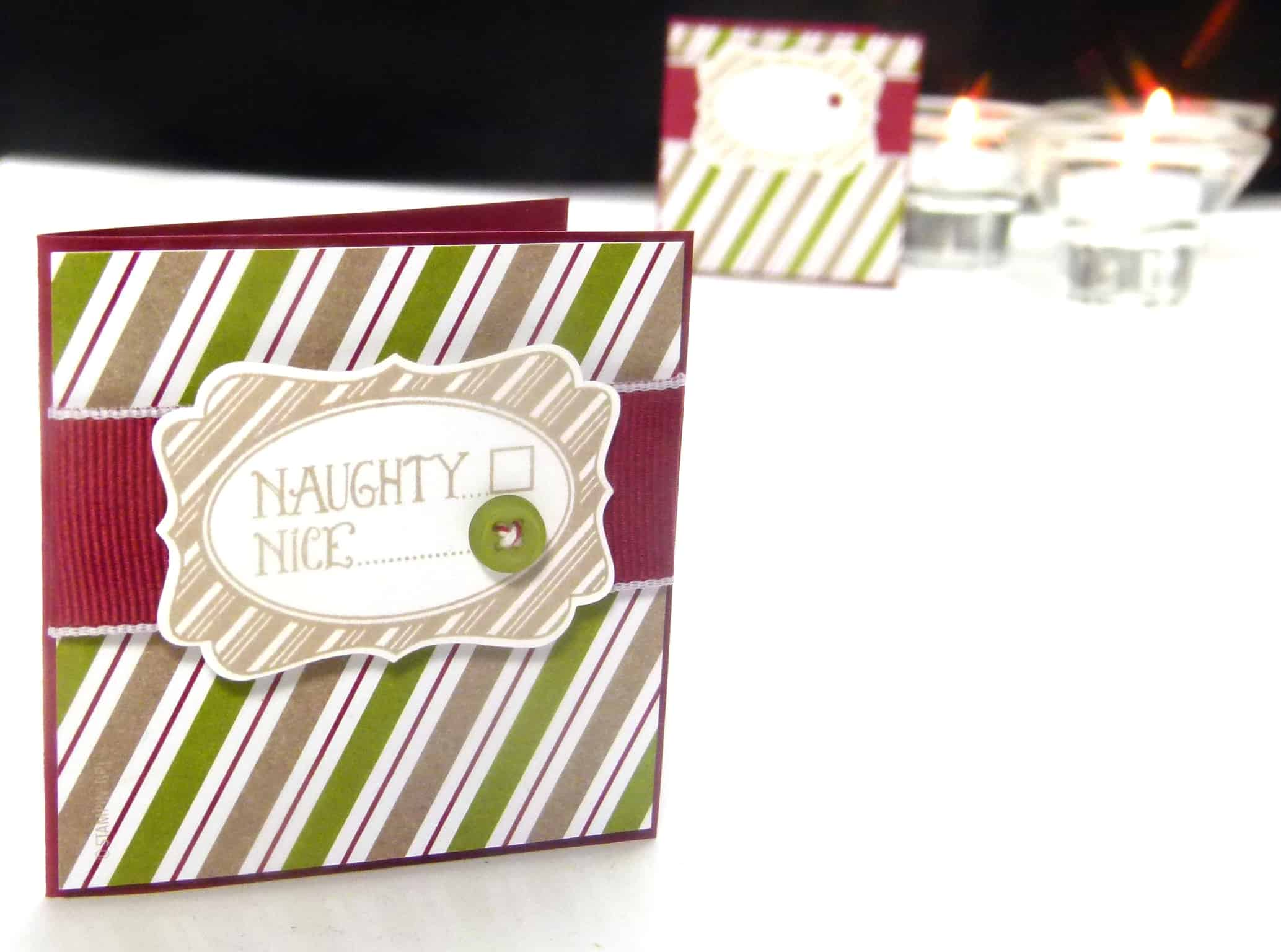 POOTLES Stampin up UK Advent Countdown Video number 3 c