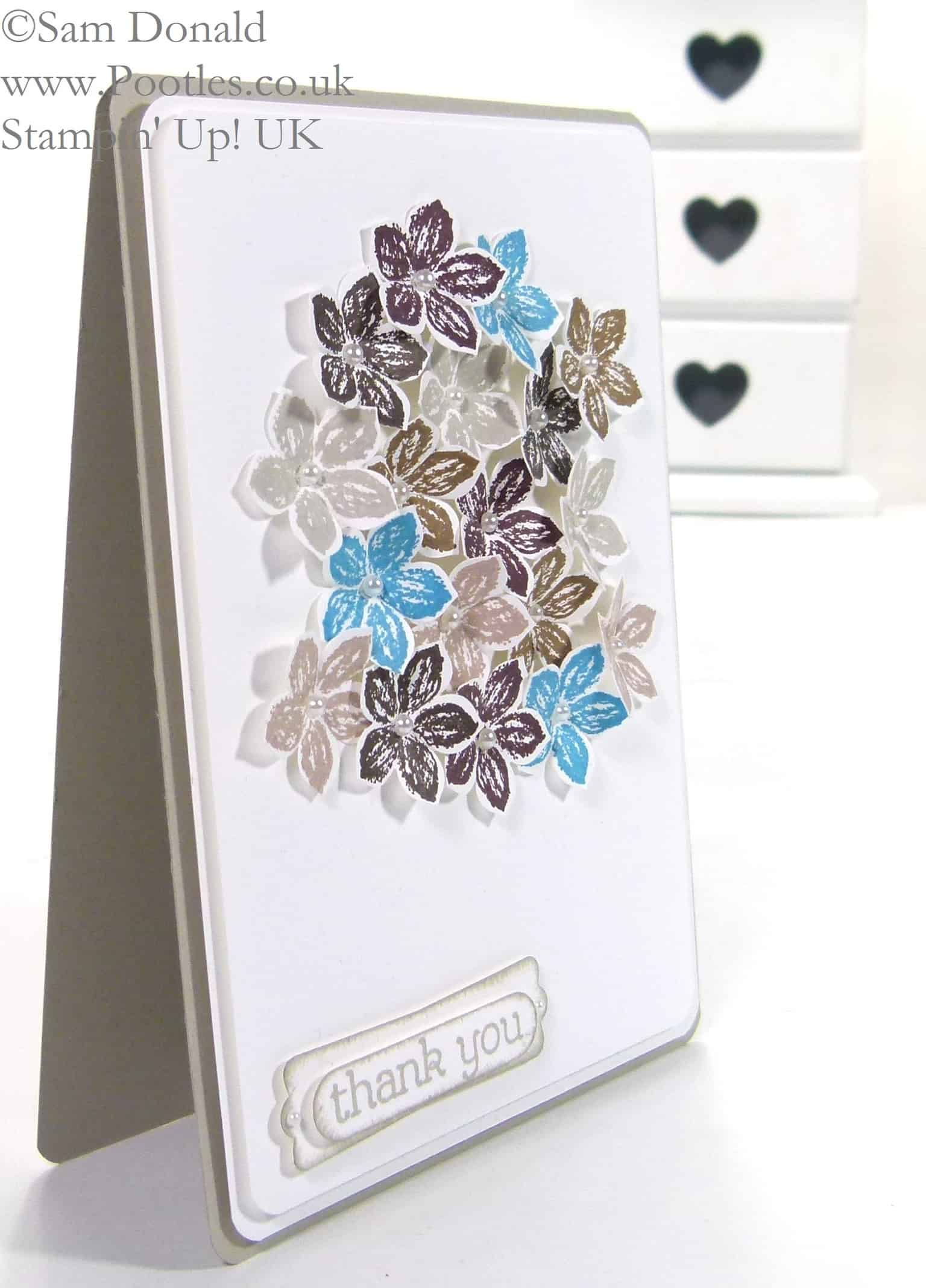 POOTLES Stampin' Up! UK Petite Petals Pop of Colour 2