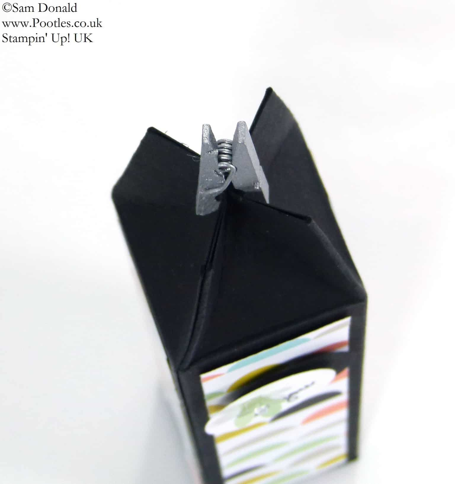 POOTLES Stampin Up UK SPRINGWATCH Tall Skinny Mini Box Tutorial