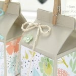 Mini Hand Cut Milk Cartons Tutorial using ©Stampin' Up! UK Supplies