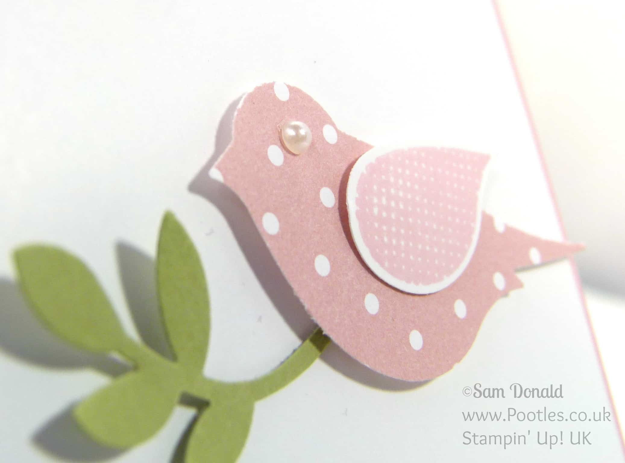 POOTLES Stampin' Up! UK Polka Dot Pieces Thank You Cards Pearl Eye Detail