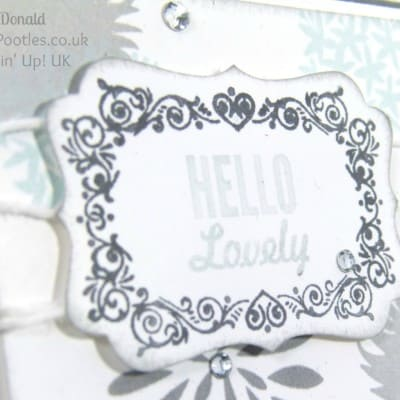 Simple Stems. Soft and Gentle Card using ©Stampin' Up! Products