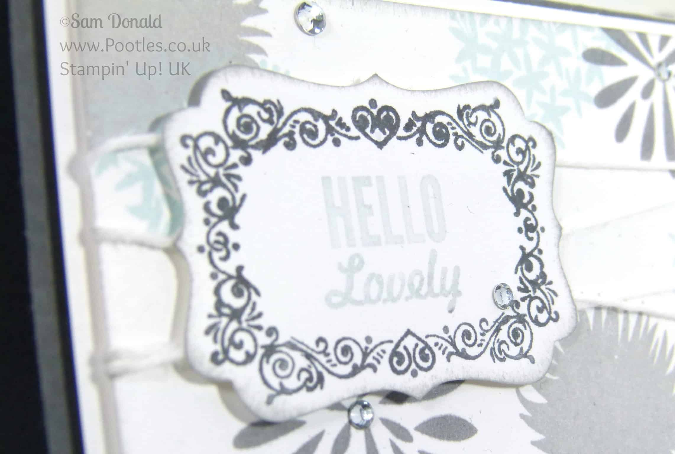 POOTLES Stampin up Uk Simple Stems. Soft and Gentle Card Hello Lovely Marker Detail