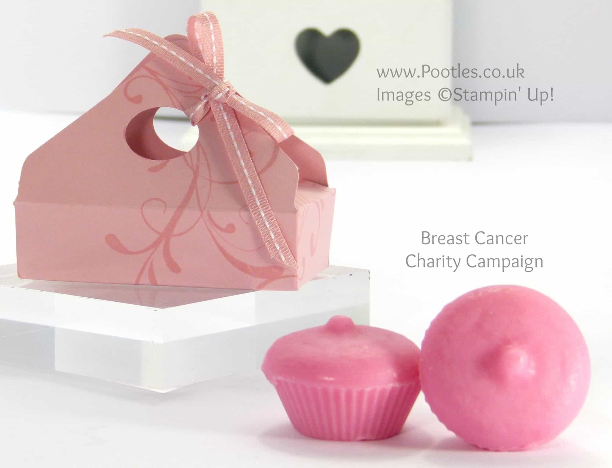 Breast Cancer Campaign Wax Melts Boxes Tutorial Single
