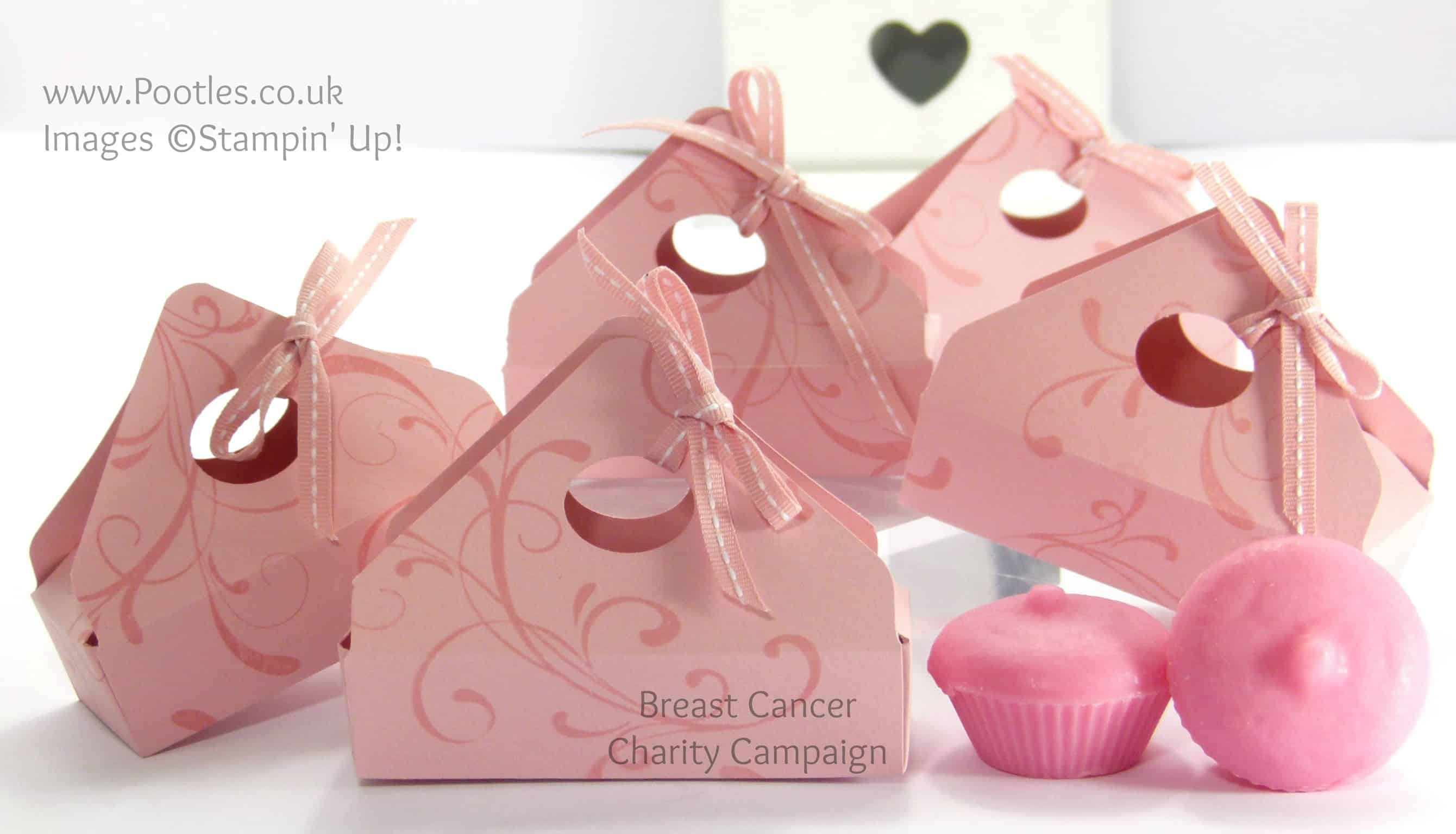 Breast Cancer Campaign Wax Melts Boxes Tutorial