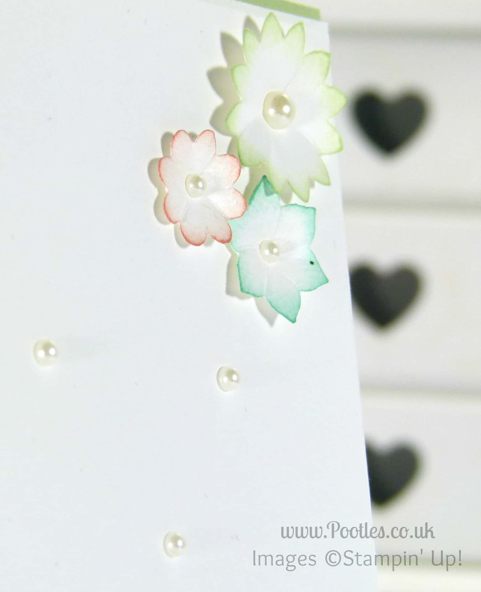 Stampin' Up! Demonstrator - Pootles. Background Stamped Punch Outs using ©Stampin' Up! Summer Sillhouettes Flower Detail