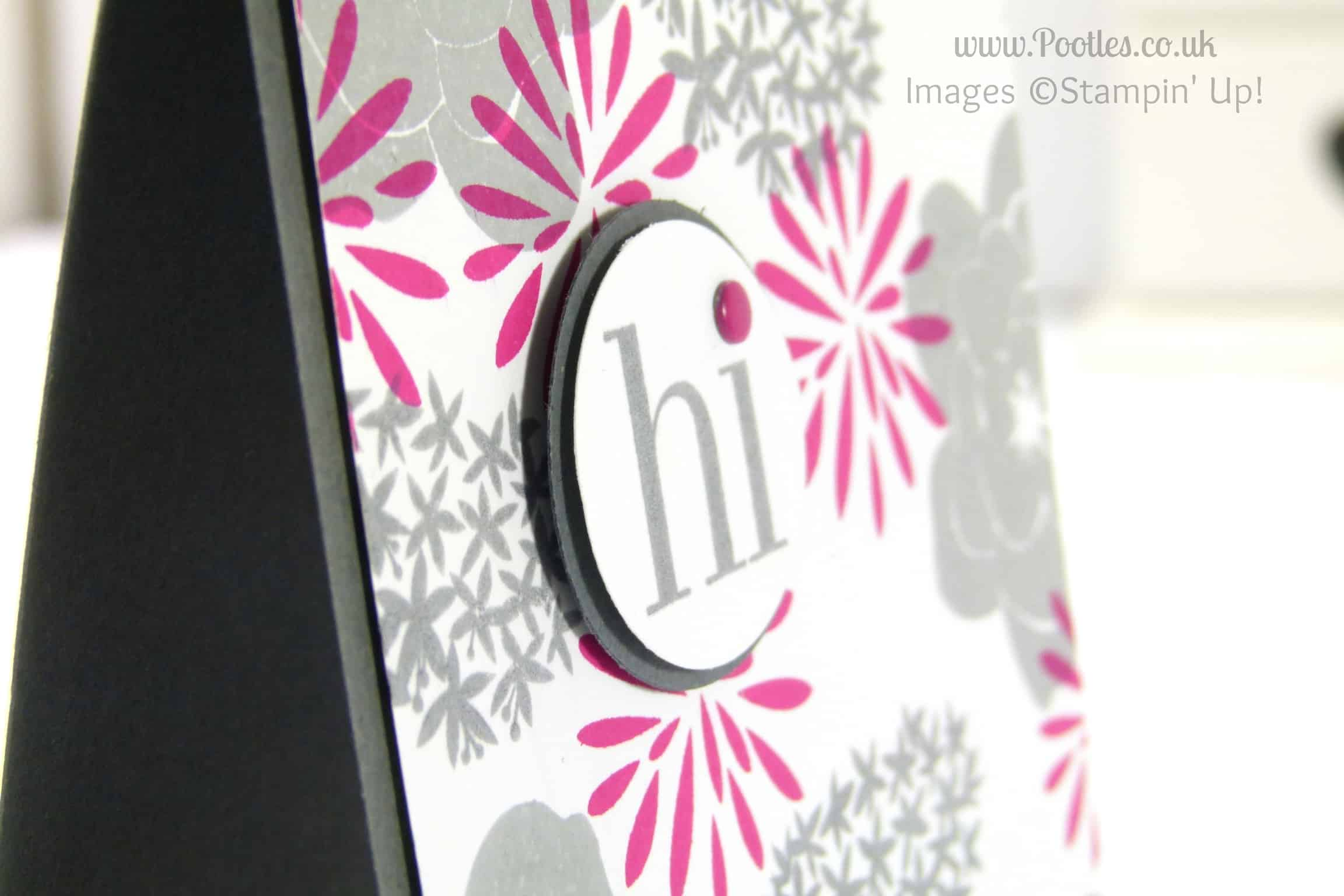 South Hill and Stampin' Up! Sunday close up