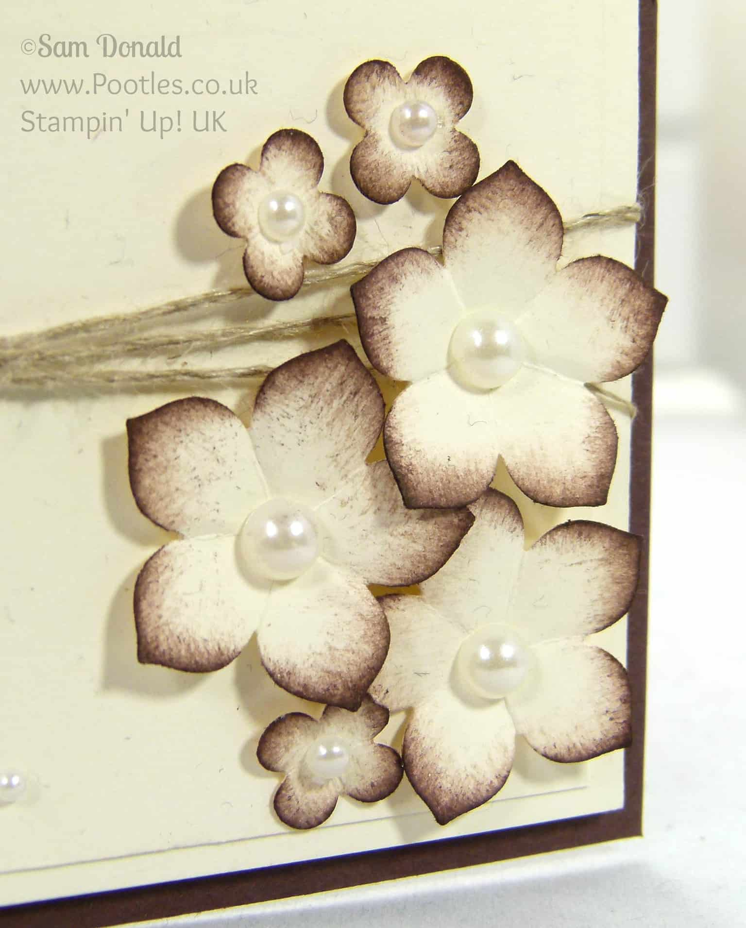 Stampin' Up! UK Independent Demonstrator Pootles - Sweetly Framed New Neighbours! Petite Petals Detail