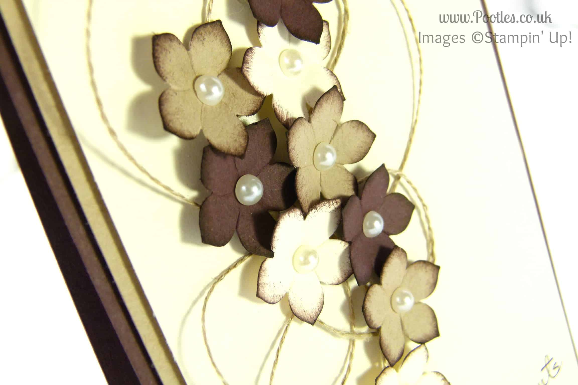 Pootles, Stampin Up UK Demonstrator - Chocolate and Cream Petite Petals Card close up