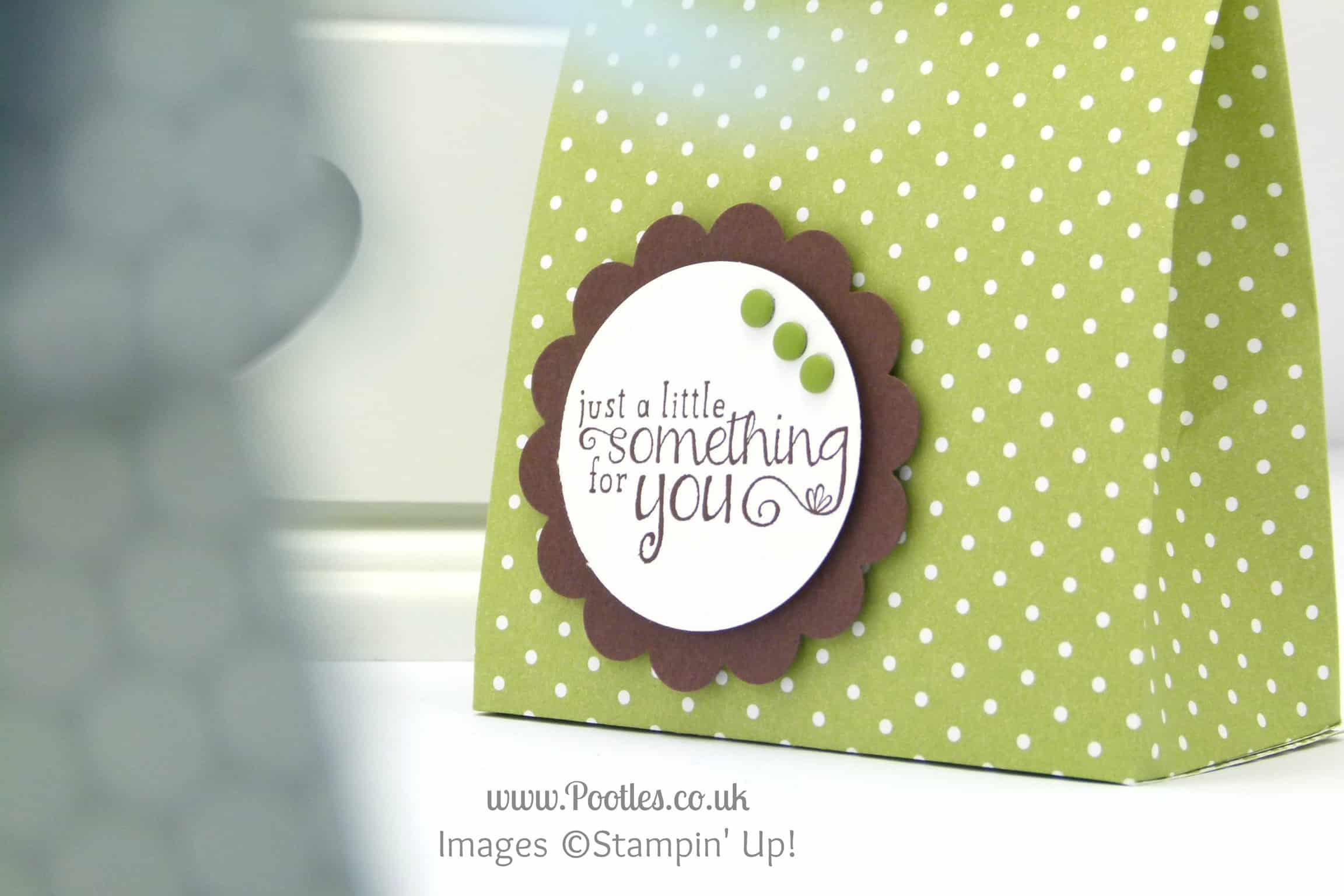 Stampin' Up! UK Demonstrator Pootles - Fold Over Paper Bag Tutorial Wording Detail