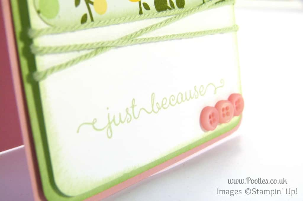 Stampin' Up! UK Demonstrator Pootles - All Abloom Just Because.... stamped detail