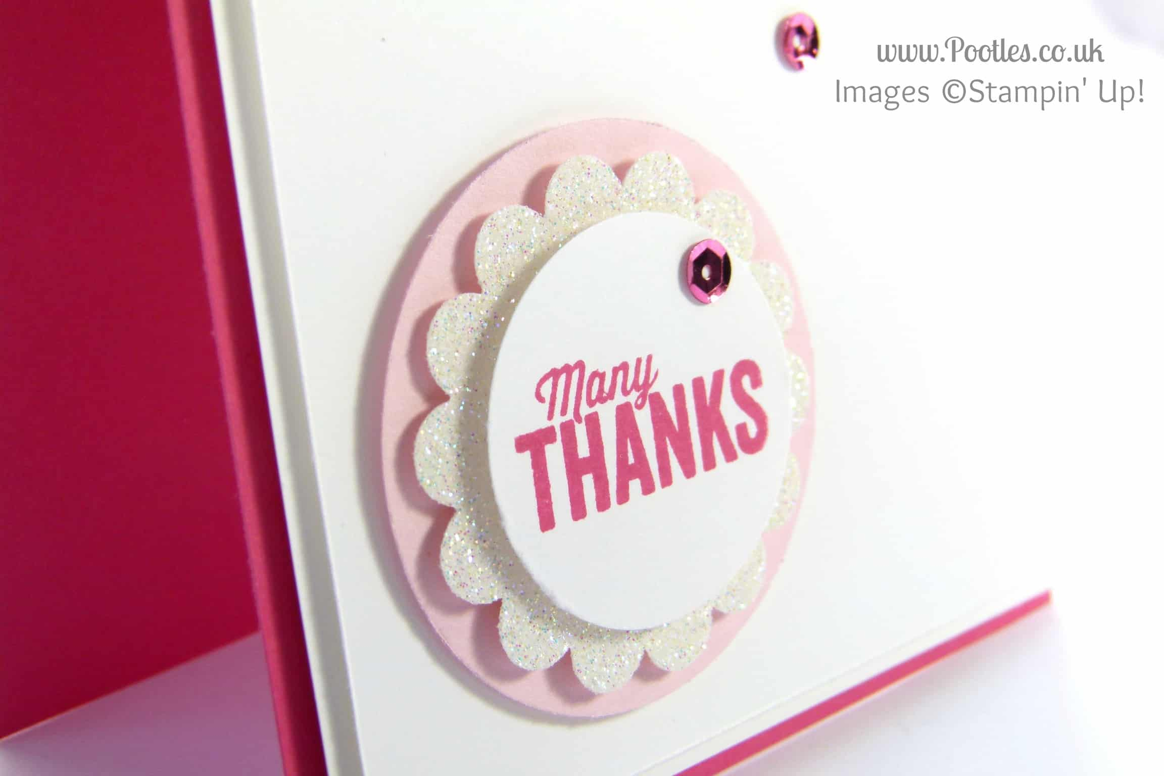 Stampin' Up! UK Demonstrator Pootles - Another Thank You. Scattered with Sequins Punches Close Up