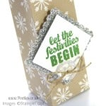 Stampin' Up! UK Demonstrator Pootles - Christmas Tree Hanging Bag Tutorial close up