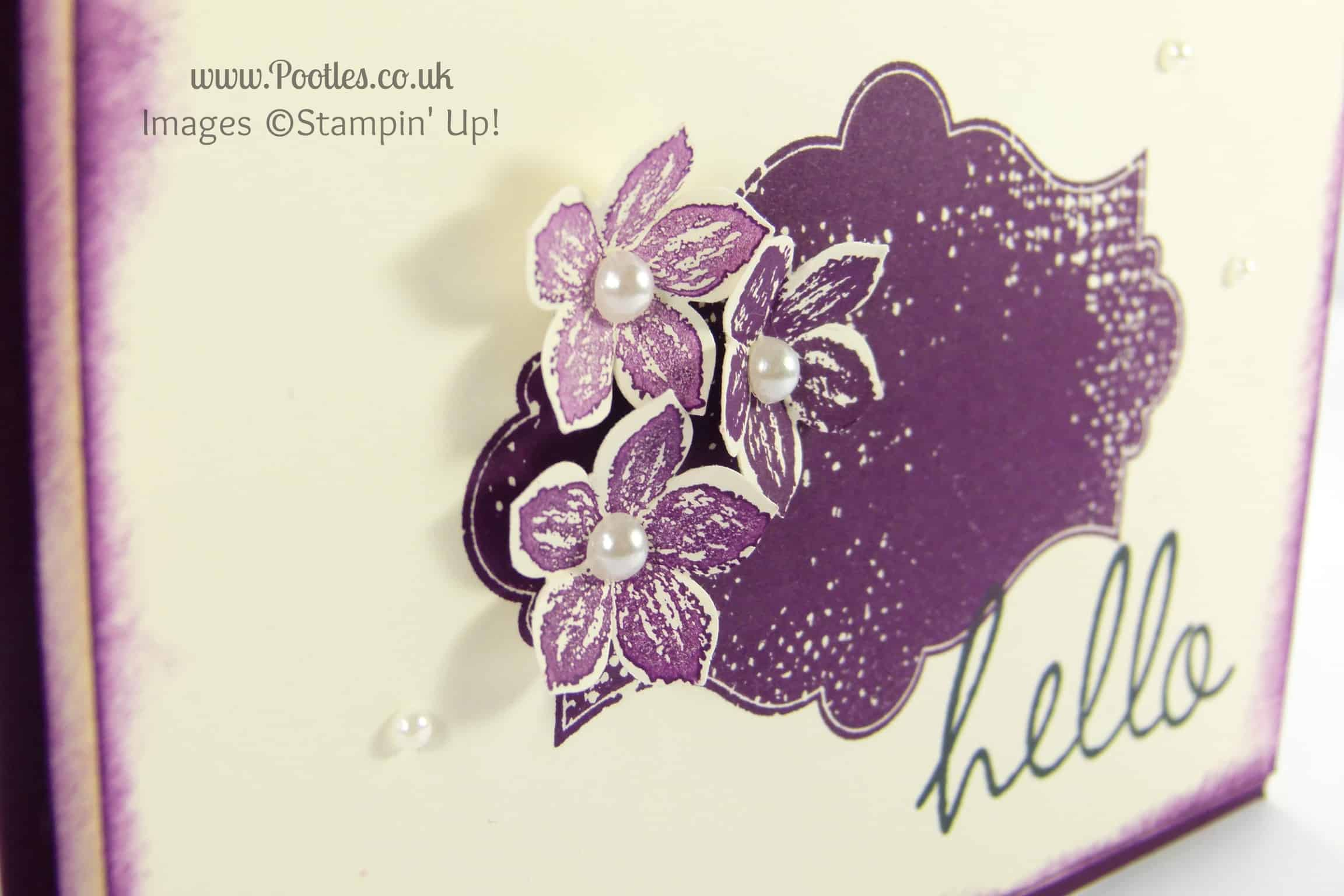 Stampin' Up! UK Demonstrator Pootles - Hey There Eleanor and Everything Petite Petals... Stamped Detail