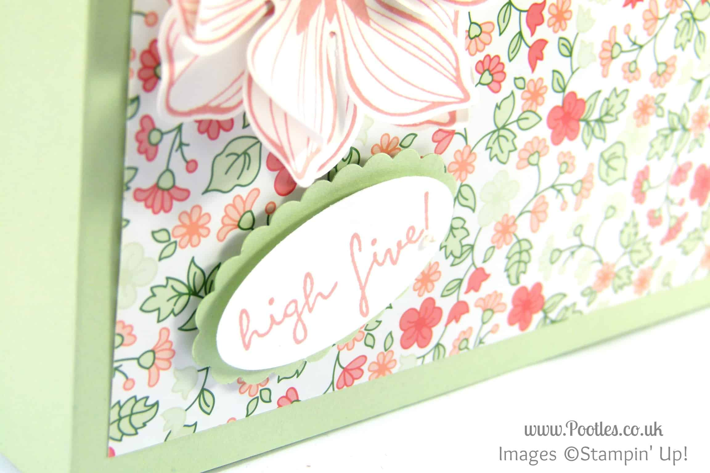 Stampin' Up! UK Demonstrator Pootles - Large Thin Clever Close Box Tutorial stamping detail