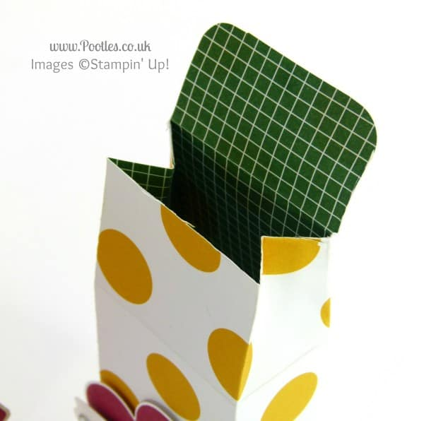 Stampin' Up! UK Demonstrator Pootles - 6x6 Mini Soap Box Tutorial + Clothespeg blooper alert... Open
