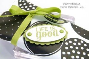 Stampin' Up! UK Demonstrator Pootles - 6x6 Sweetie Pouch Tutorial stamping detail