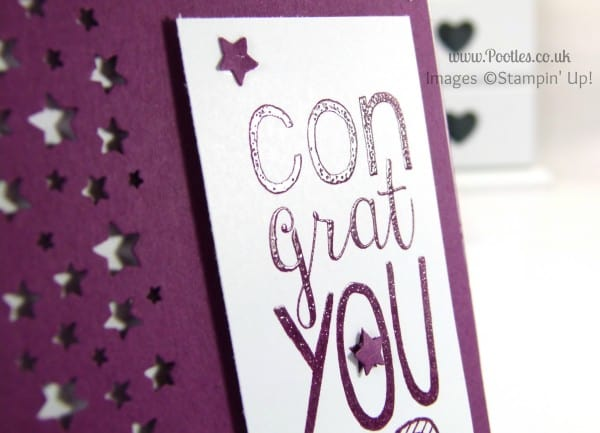 Stampin' Up! UK Demonstrator Pootles - Bravo Rich Razzleberry with Confetti Stars on Top! heat embossing detail