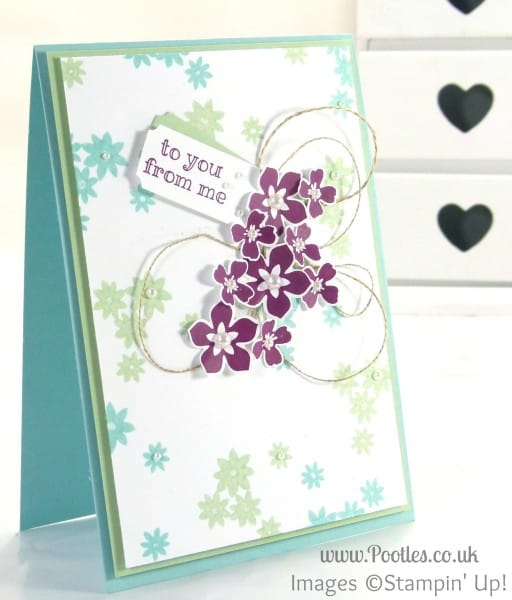 Stampin' Up! UK Demonstrator Pootles - Crazy Colour Floral Card