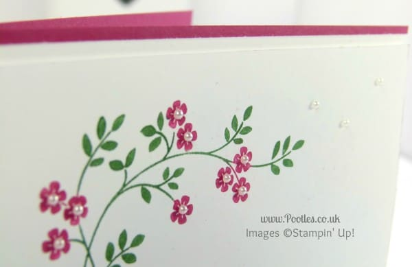 Stampin' Up! UK Demonstrator Pootles - Hopeful Thoughts and CASEing myself.... Marker Detail