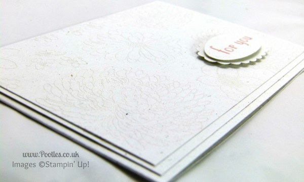 Stampin' Up! UK Independent Demonstrator Pootles - White on White Heat Embossing close up