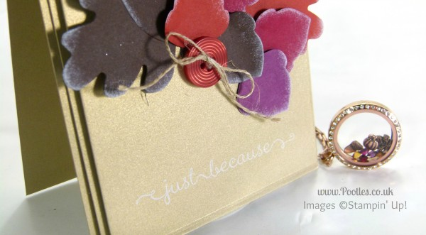 South Hill Designs & Stampin' Up! Sunday Autumn Showcase Sentiment Visual