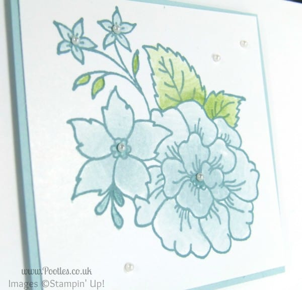 Stampin' Up! UK Demonstrator Pootles - Gentle Card using Stampin' Up! Hostess Exclusive I Like You Set close up detail