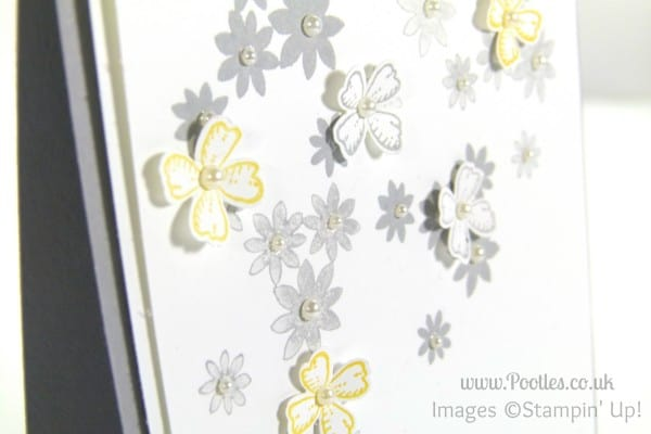 Stampin' Up! UK Demonstrator Pootles - Something to Say about a Garden Party Close Up
