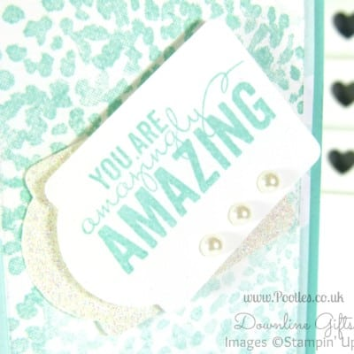 Pretty Notebooks for my Stampin' Up! Team!