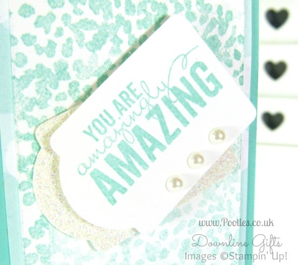 Pretty Notebooks for my Stampin' Up! Team! Close Up