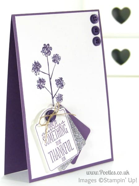 Stampin' Up! Demonstrator Pootles - Mum's the Word, You Brighten My Day