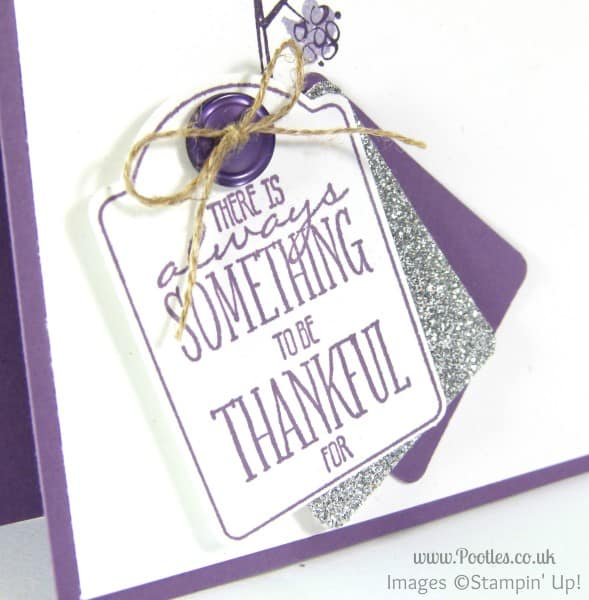 Stampin' Up! Demonstrator Pootles - Mum's the Word, You Brighten My Day Note Tag Close Up