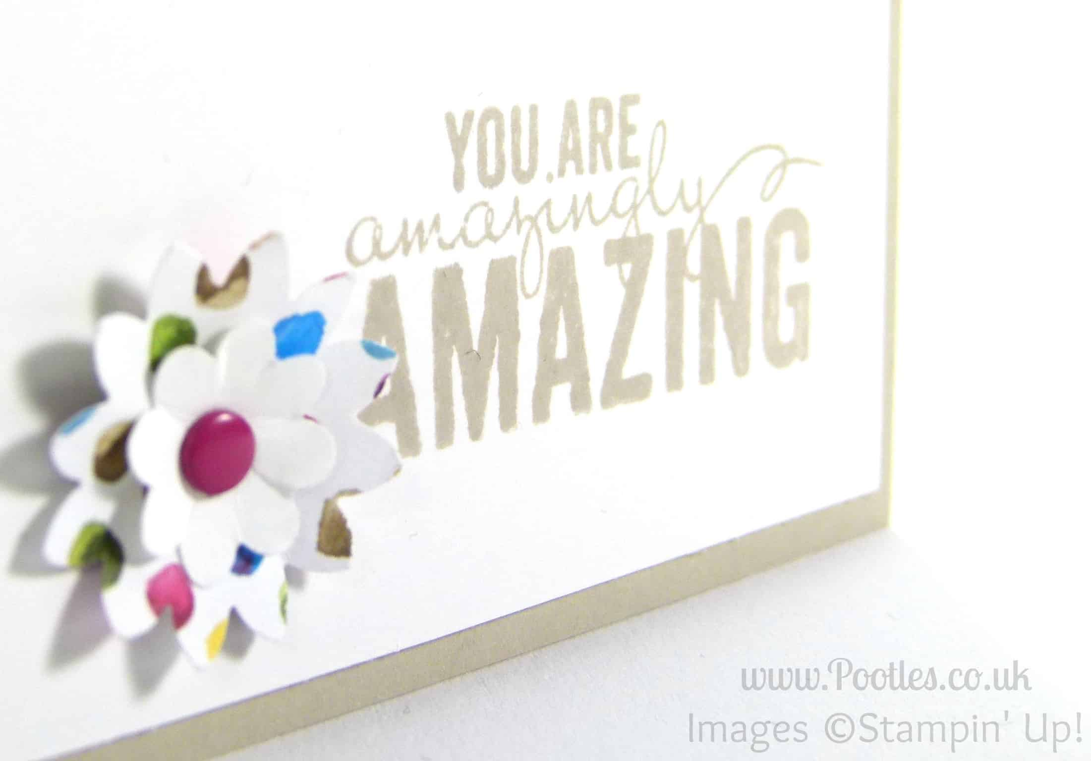 Stampin' Up! Spring Summer Catalogue is LIVE!
