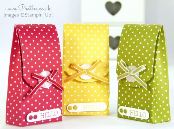 Pootles' Spotty Magnet Bag Tutorial using Stampin' Up! DSP