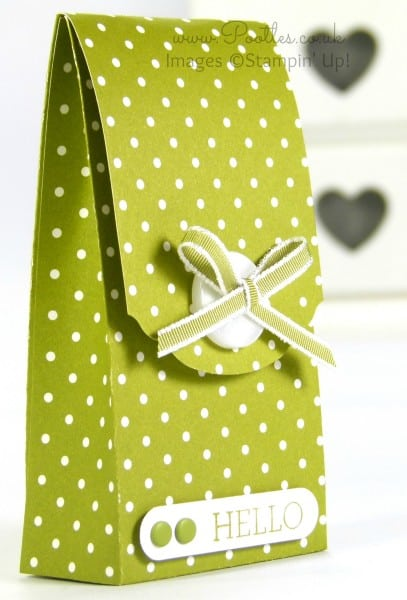 Pootles' Spotty Magnet Bag Tutorial using Stampin' Up! DSP Old Olive