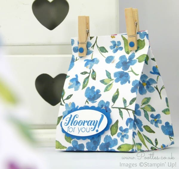 Stampin' Up! Bloomin' Fat Squishy Bag Tutorial Pacific Point