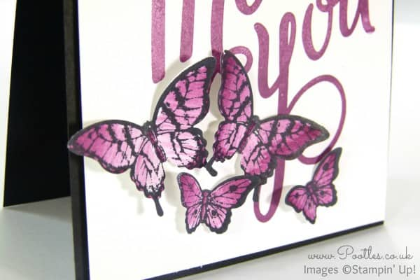 Stampin' Up! Demonstrator Pootles - Another Thank You with Papillon Pot Pourri Close Up
