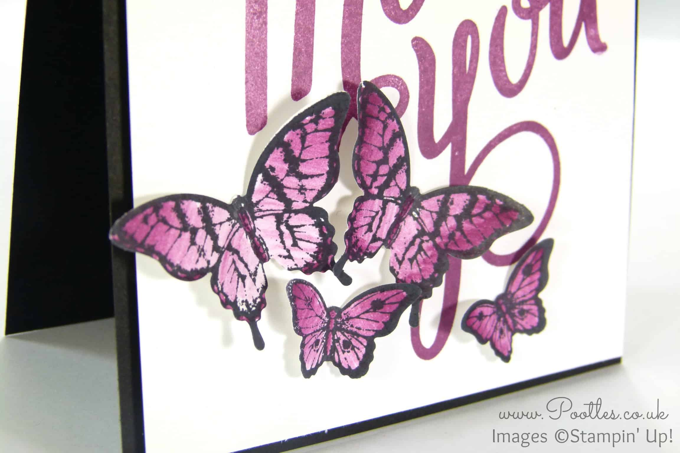 Another Thank You with Papillon Pot Pourri