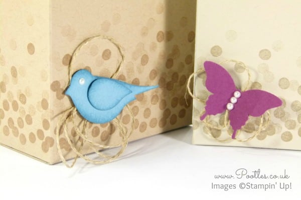 Stampin' Up! Demonstrator Pootles - Baby 'Scene' Box Tutorial Punch Detail