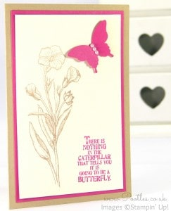 Stampin' Up! Demonstrator Pootles - March Thank You Cards! Melon Mambo