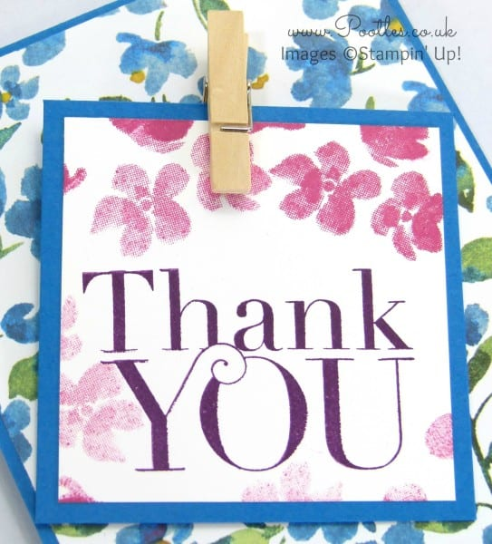 Stampin' Up! Demonstrator Pootles - Painted Blooms Thank You Cards Sentiment