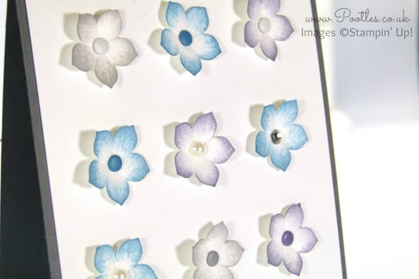 Stampin' Up! Demonstrator Pootles - Petite Petals x 12.... Pretty and Delicate Close Up