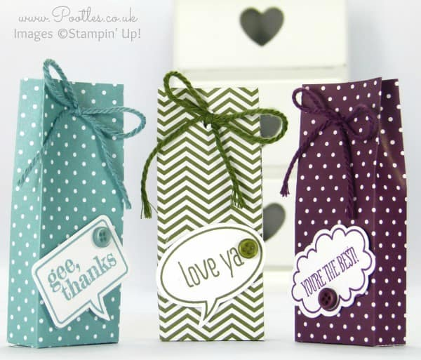 Stampin' Up Demonstrator Pootles Shares her son Jacob's Tic Tac Bag Tutorial!