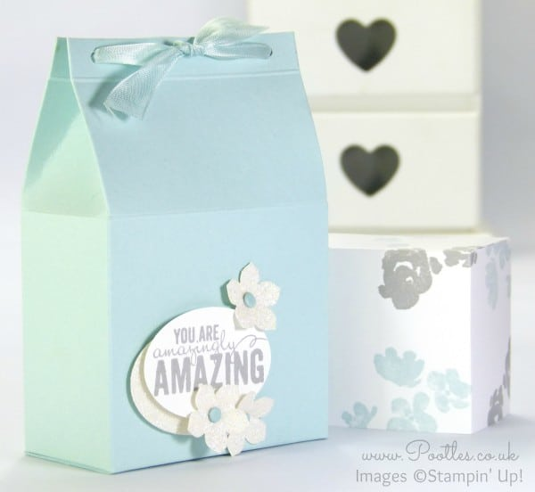 Stampin' Up! Demonstrator Pootles - Sneaky Box with Flush Fitting Lid