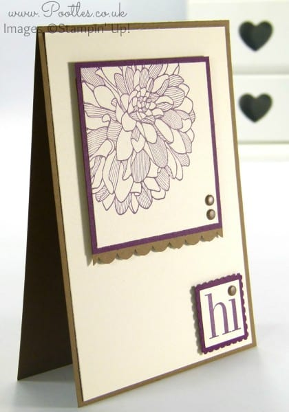 Stampin' Up! Demonstrator Pootles - Soft Suede & Blackberry Bliss Regarding Dahlias