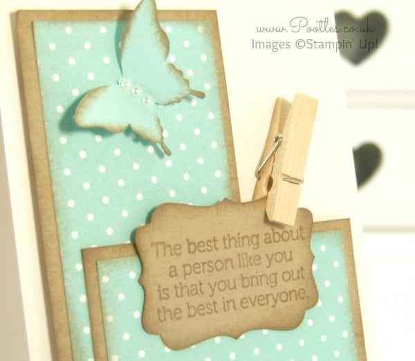 Stampin' Up! Demonstrator Pootles - Crumb Cake World of Dreams CASEing ME! Close Up