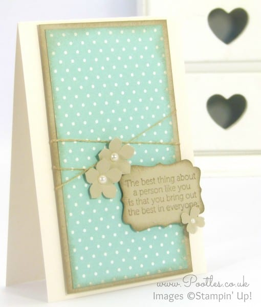 Stampin' Up! Demonstrator Pootles - Soft Sky World of Dreams